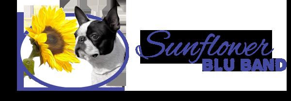 Allevamento Boston Terrier - SunFlowersBluBand - Toscana